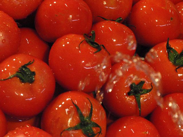 El bloqueo ruso, otra preocupación para los productores de tomate