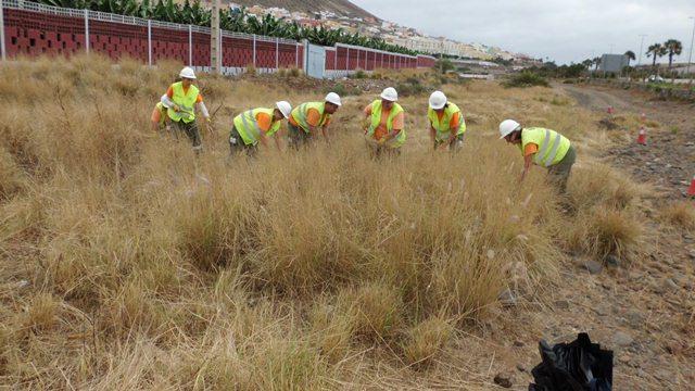 Gesplan, freno al sector privado de Canarias